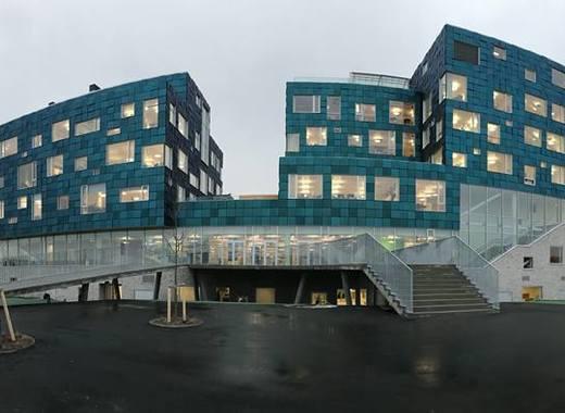 Medium cis copenhagen international school