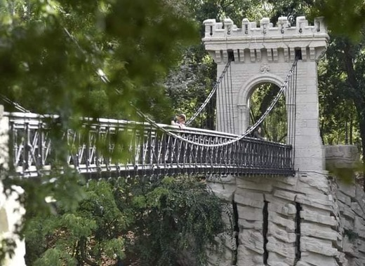 Medium suspension bridge