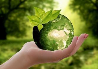 Thumb nature 3289812 960 720