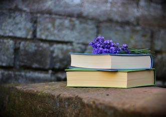Thumb books 2420232 960 720