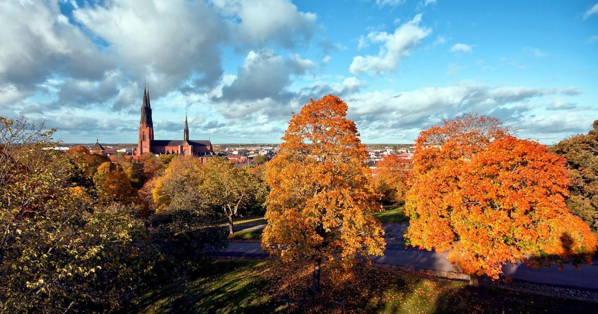 Swimming areas | Destination Uppsala