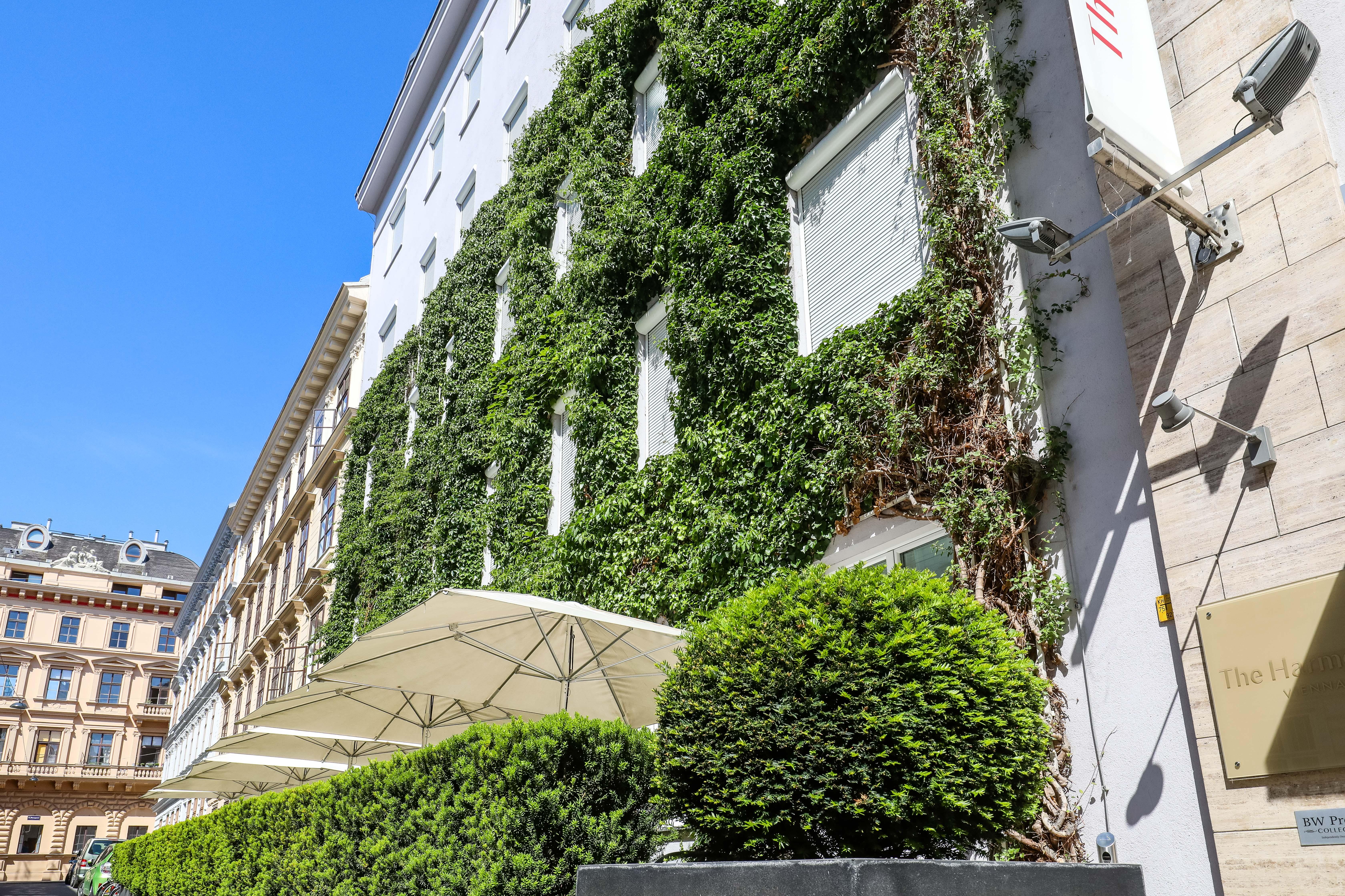 the city of Vienna green façade